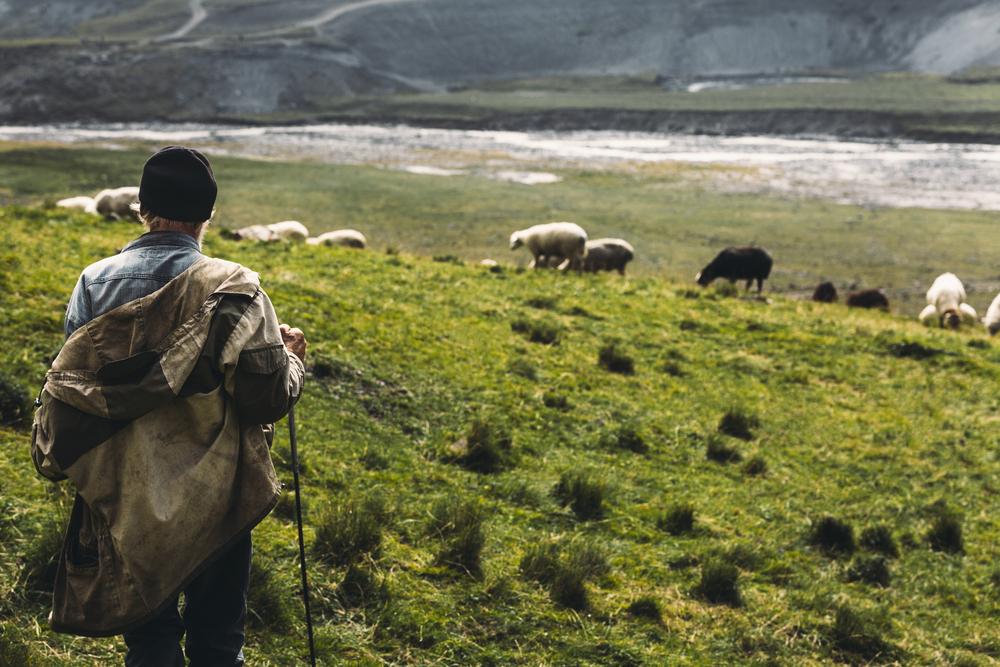 Pastore sulle montagne del Caucaso (© Sergey Tinyakov/Shutterstock)
