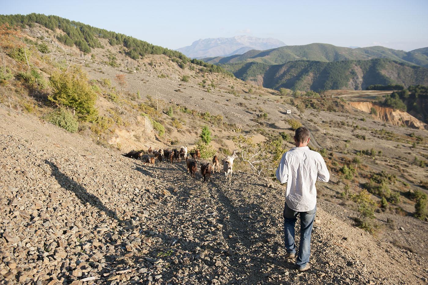 Pascoli nella regione di Pukë