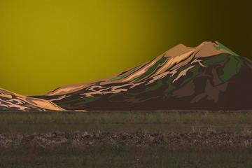 L'immagine di una radura con alle spalle una montagna