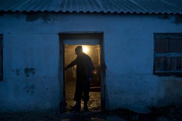 Sashik Vardanyan, 63 anni - foto Chai Khana