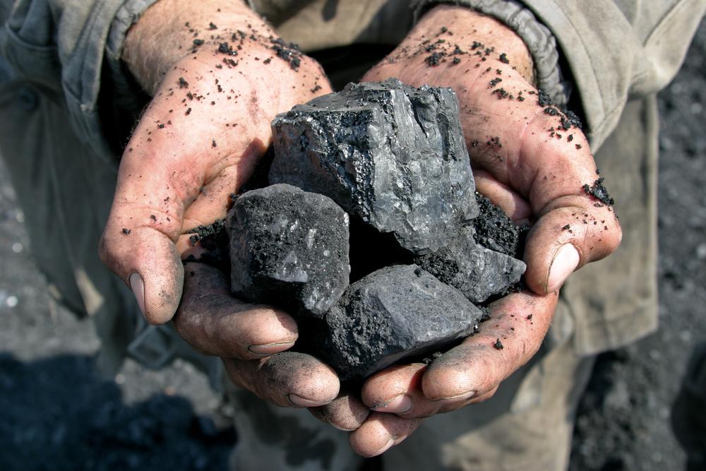 Mani di minatore che raccolgono dei pezzi di carbone © Vyacheslav Svetlichnyy/Shutterstock