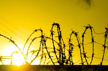 Filo spinato all'alba - foto Pyathep - Shutterstock
