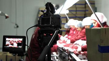 DERT, durante la lavorazione dei lamponi - foto © Mario Boccia.jpg