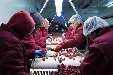 Lavoratrici a Bratunac (© Giovanni Vale/Shutterstock)