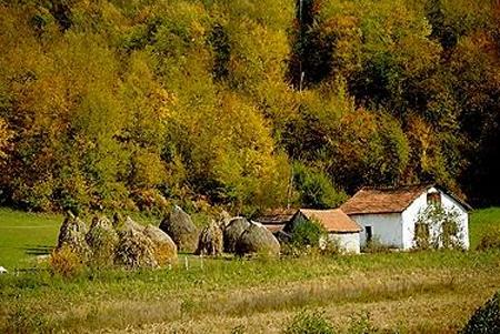 Campagna Bosnia