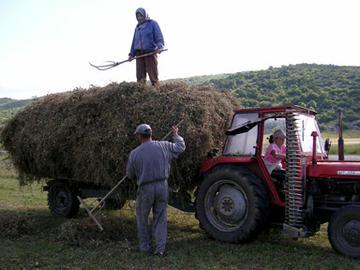 Agricoltori BiH