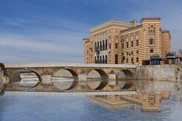 Sarajevo, la Vijesnica (foto di MehmetO/Shutterstock)