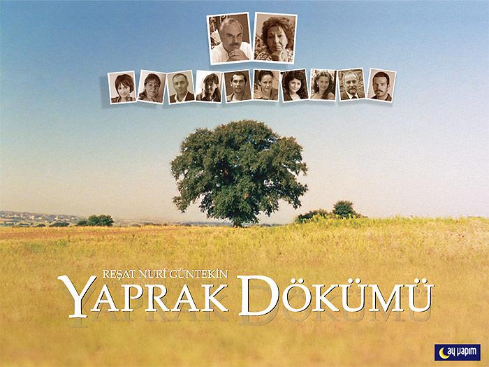 Yaprak Dökümü - La caduta delle foglie