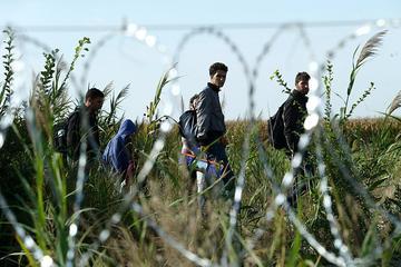 Migranti na Balkanskoj ruti - Gémes Sándor/SzomSzed/Wikimedia