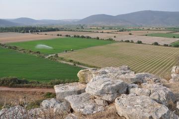 La piana dell'antico lago Copaide, visto dalle mura di Gla, che vi si affacciava allora come un isola. Foto di F.Polacco