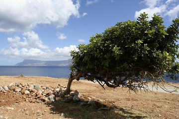 Isola di Creta, paesaggio enricod/flickr