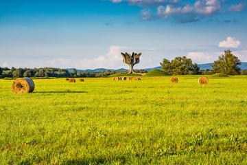 Il memoriale di Jasenovac, Croazia (© marketa1982/Shutterstock)