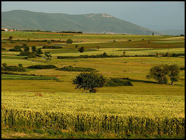 Golden farms, Kosovo - Senol Demir/flickr