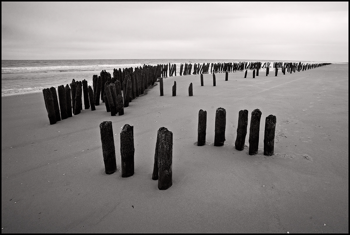 Anjan Chatterjee/flickr
