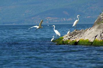 I laghi di Prespa