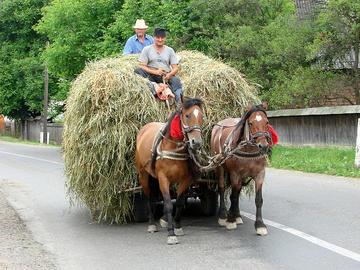 Romania rurale - Adam Jones, Ph.D./flickr