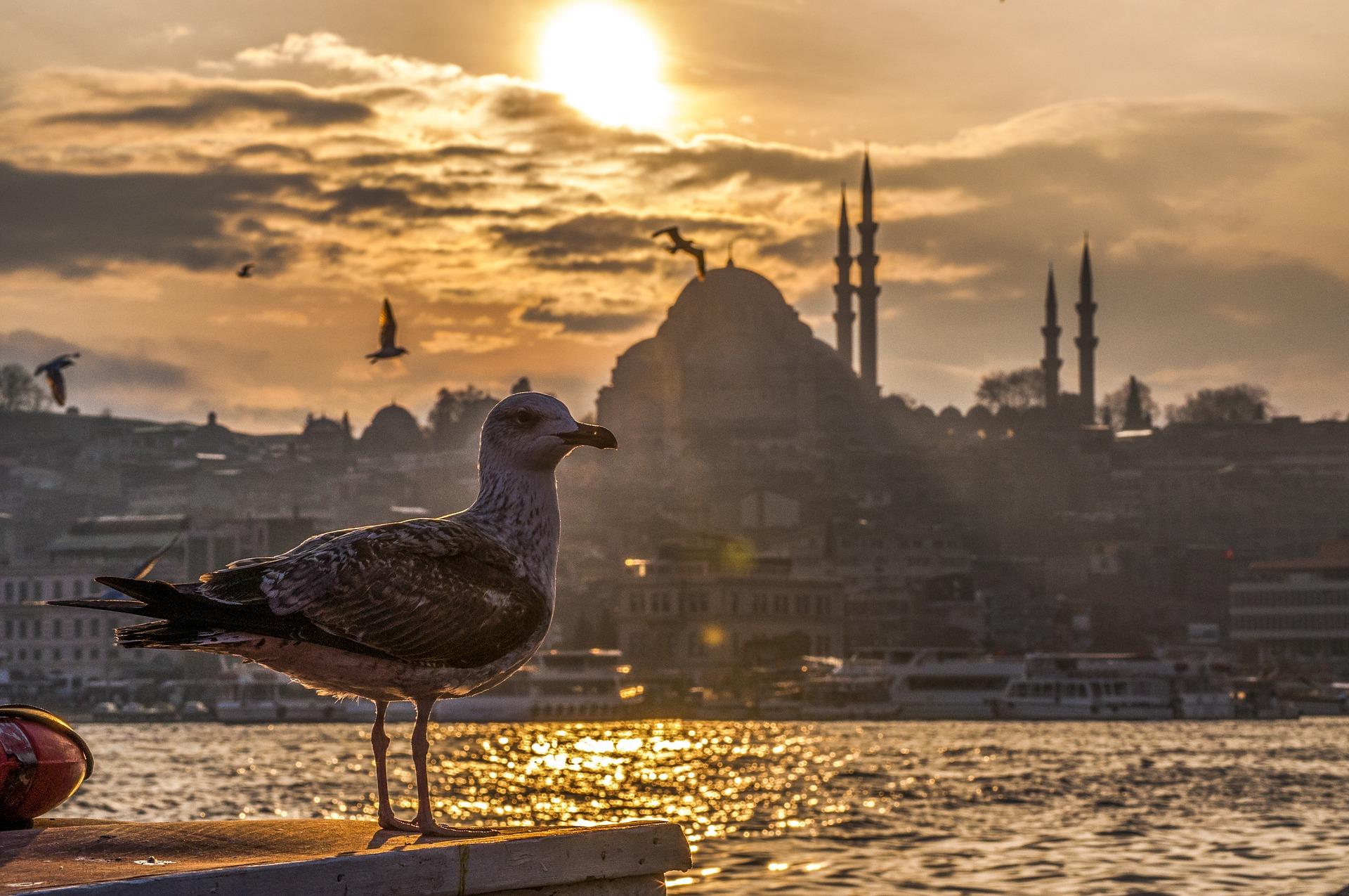 Istanbul (pixabay CC0 Creative Commons)