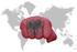 Albania, pugno e bandiera - foto Esfera Shutterstock
