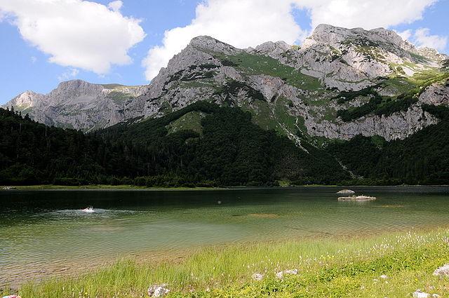 Parco nazionale di Sutjeska - Wikimedia
