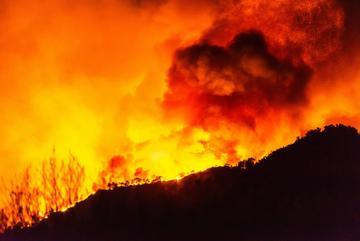 Incendi in Turchia - © Alizada Studios/Shutterstock