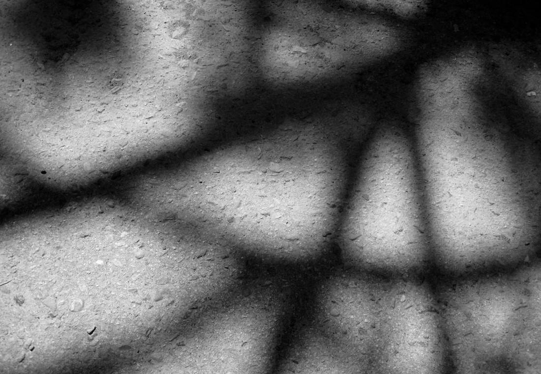 Ombre, foto Alan Levin - Flickr.jpg