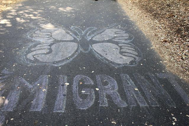 Diritto a migrare, foto Quinn Dombrowsi - Flickr.com.jpg