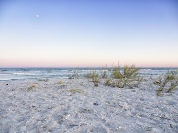 Un tratto di spiaggia a Vadu, Romania - © Laurentiu Raicu/Shutterstock