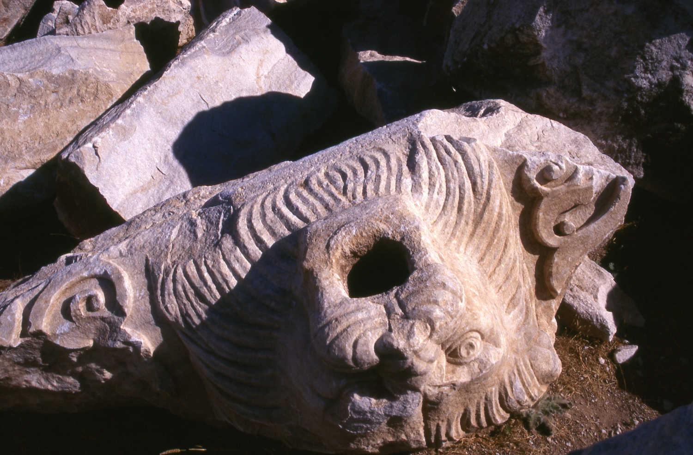 Una protome leonina che fungeva da doccione del tempio di Zeus a Cizico, Foto F. Polacco