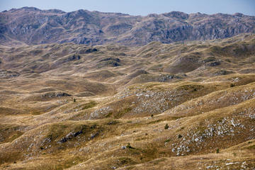 Sul massiccio della Sinjajevina (© Lenar Musin/Shutterstock)