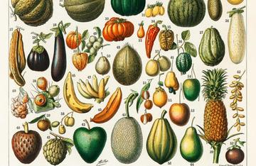 Frutta e verdura in Nouveau Larousse Illustré, 1898 (foto: Rawpixel Ltd/Flickr – CC BY 2.0 )