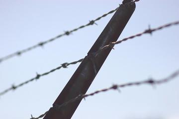 Filo spinato, foto di Grendelkhan - Flickr.com.jpg