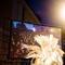 Serbia: i festival brand