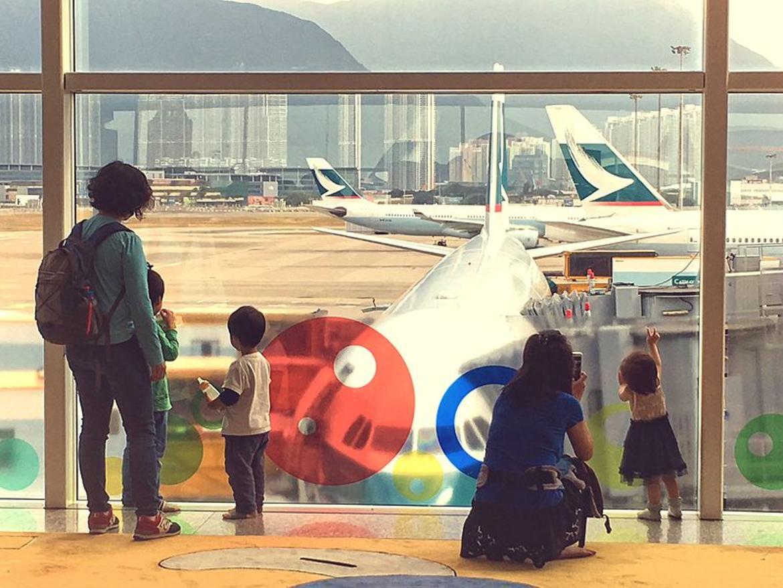 Photo: K.Poh/Wikimedia   CC 2.0