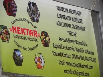 Cooperativa Nektar, inaugurazione ottobre 2012 - www.ipsia-acli.it