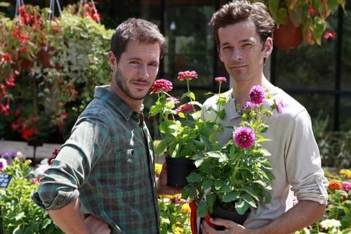 La francia apre ai lavoratori rumeni romania aree - Giardinieri in affitto chi paga i lavori ...