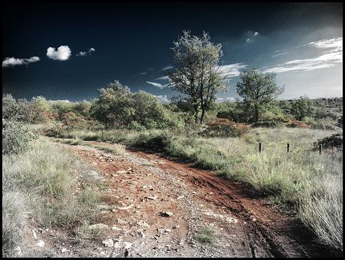 Carso (desta/flickr)