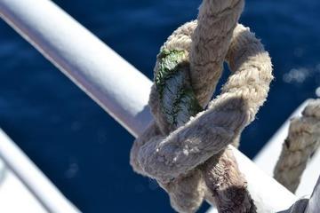 Nodo marinaio, Croazia, foto di Zana - Flickr.com