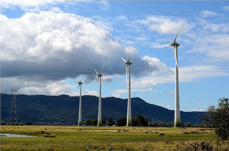 Parco eolico (foto di Rodrigo Prado)