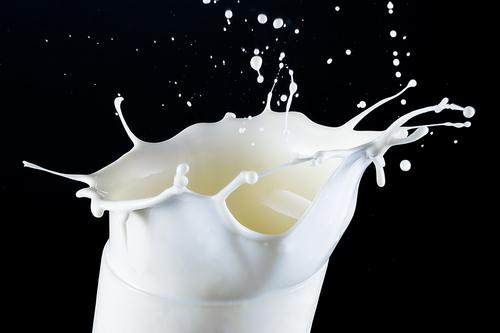 Milk (foto shutterstock)