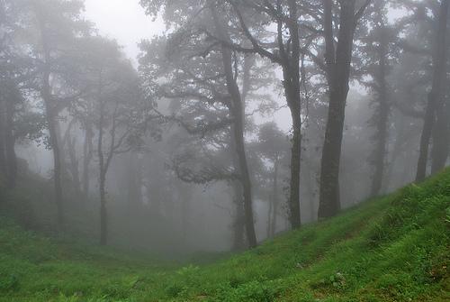 (Foto Himalayan Trails, Flickr)