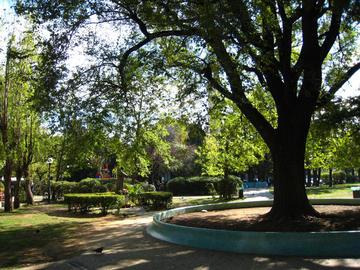 Trieste, giardini di Piazza Rosmini.jpg