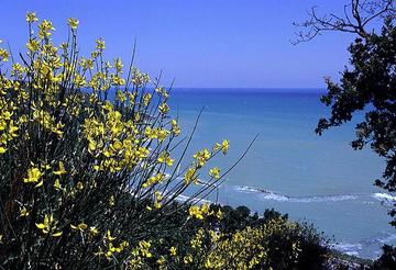 Scorcio sull'Adriatico