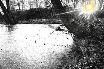 Raggio di sole - foto di Fabri - Flickr.com