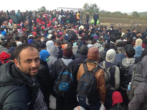 Berkasovo, il cordone dei poliziotti croati al valico di confine (Foto AOR)