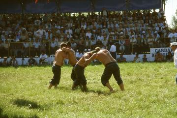 Çardak, Turkey, a tournament of yağlı gures (photo F. Polacco)