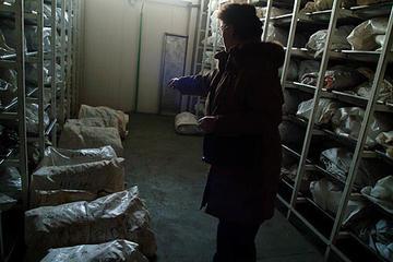 Tuzla, nella sede dell'ICMP (Foto Gughi Fassino)