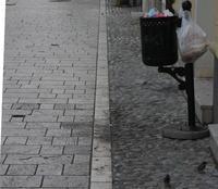 Un gesto sempre più comune: un sacchetto col pane del giorno prima appeso fuori del cestino dei rifiuti (Foto Michele Biava)
