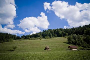 I campi attorno a Zelenkovac vengono falciati dai volontari