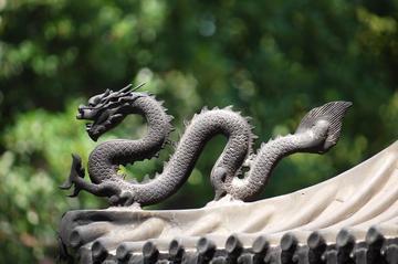 Il dragone, simbolo della Cina - Pixabay