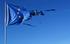 Bandiera europea consumata, DNetromphotos Shutterstock.jpg